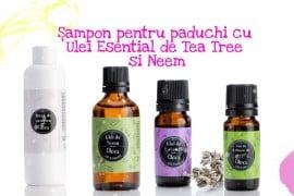 Sampon pentru paduchi cu Ulei Esential de Tea Tree si Neem